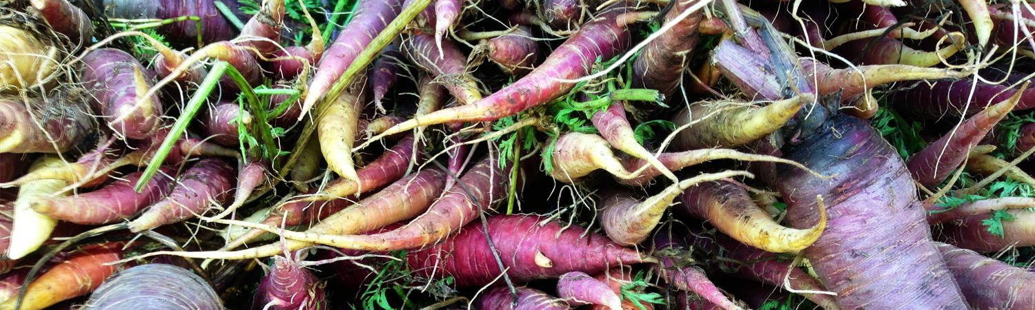 Conventional Weight Management Carrots