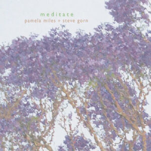 Meditate-CD-Visual